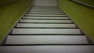 trappeneser i sort